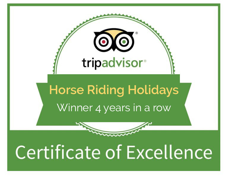 Best Horse Riding Holidays Spain