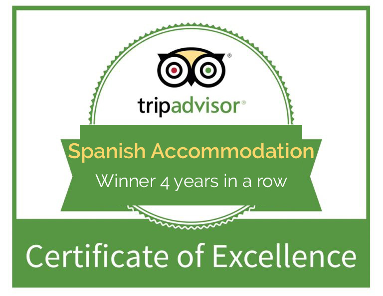 Hacienda-Horses-Spainish-Accommodation
