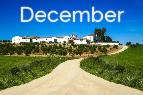 Horse-Riding-Events-in-Spain-December