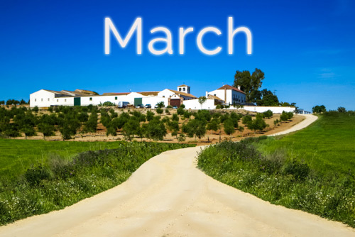Horse-Riding-Events-in-Spain-March