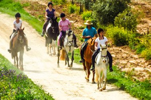 Horse Riding Holidays in Spain