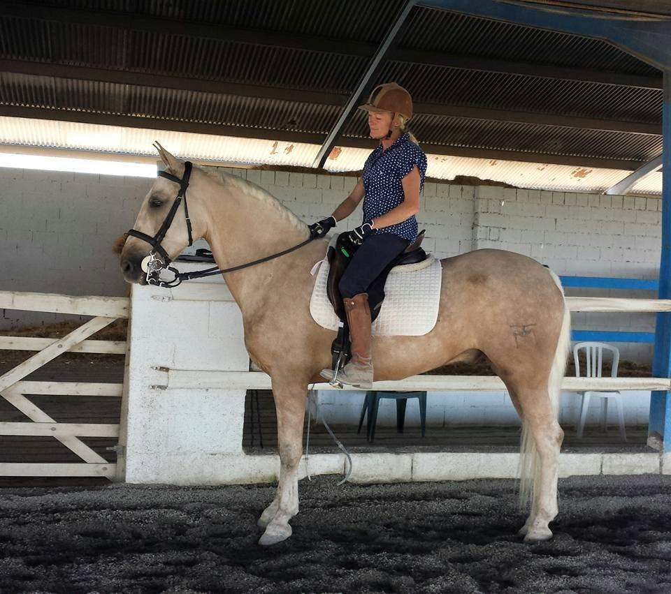 Horse Riding Holiday Spain Magnus
