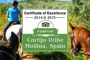 Trip Adviser Cortijo Uribe Hacienda Horses