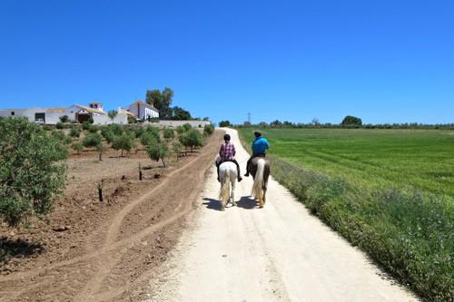 Horse Riding Holidays Spain
