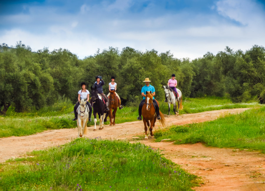 Hacienda-Horse-Riding-Spain-Christine-Hartfield