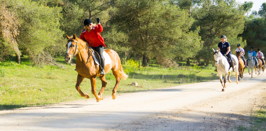 Hacienda-Horse-Riding-Spain-Responcible-Tourism